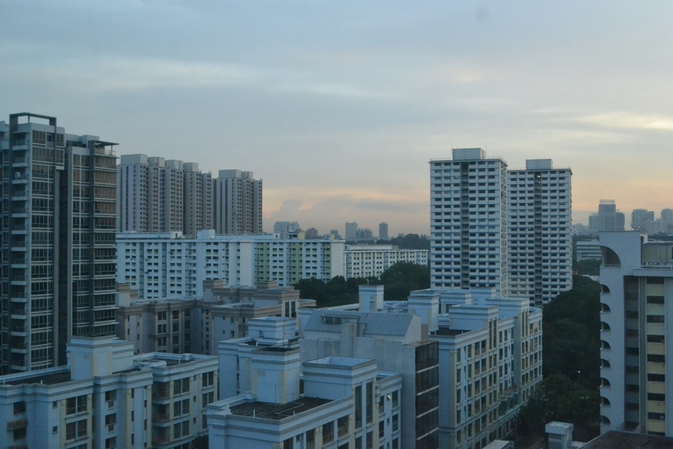 Roofs of Singapore